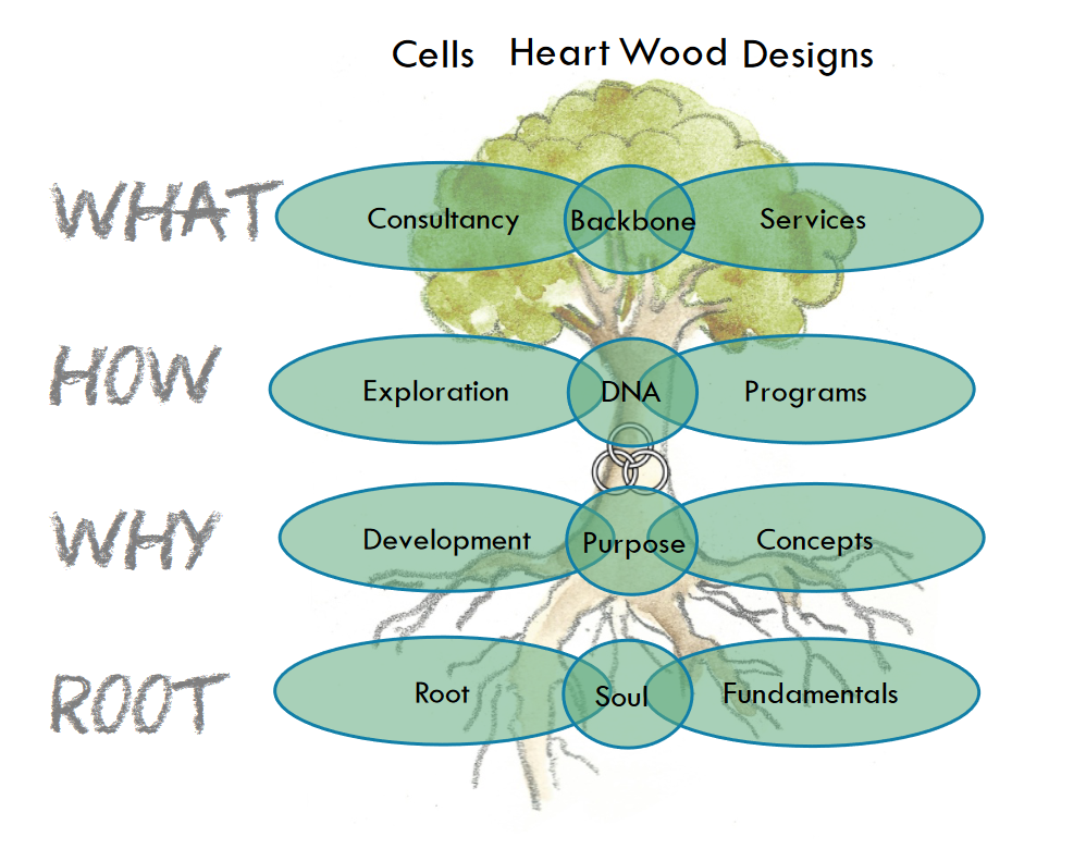 Emprogage Cells and Designs
